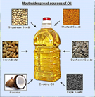 edible oil scenario in india India is one of the largest producers and consumers of edible oils and fats in the  world it is also the world's largest importer of edible oils but when compared.